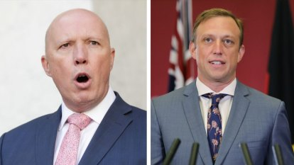 'It is like watching a juvenile': Dutton launches attack on Deputy Premier