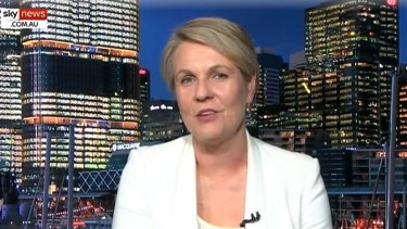 Tanya Plibersek on Alan Jones' Sky News program.