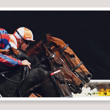 Jockey Craig Williams (right) rides Vow and Declare to victory at the 2019 Melbourne Cup.