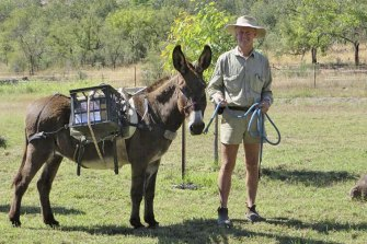 Kachana Station owner Chris Henggler with a pack donkey.