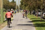 The inner-city Rail Trail winds its way through Carlton north.