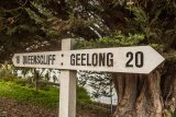 Bellarine Rail Trail starts next to South Geelong V Line station.