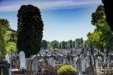 Melbourne General Cemetery covers a 43-hectare expanse of ground just 2km north of the city.