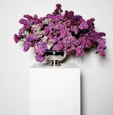 From <i>The Flowers</i>.