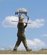 Ecologist Inka Veltheim carries one of the 'decoy brolgas'.