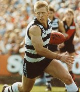 Steve Hocking played 199 games for Geelong.