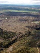 Land clearing at Yarol, in Moree.