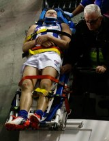 North Melbourne youngster Kayne Turner was one of many players to suffer concussions during an AFL game in 2015.