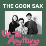 The Goon Sax: Up To Anything.