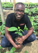 Nathan Bello is the project manager of the Nestle Cocoa Plan.