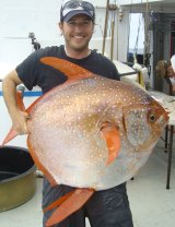 Nicholas Wegner holds an opah caught during a research survey off the California coast.