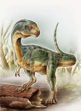 An odd duck: An artist's depiction shows the Chilesaurus diegosuarezi.