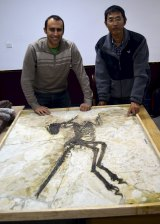 Steve Brusatte and Junchang Lu next to the skeleton.