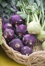 A basket of fresh organic purple and white kohlrabi on display at a local farmer's market.
