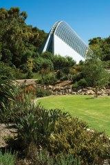 Bicentennial Conservatory in the Adelaide Botanic Garden.