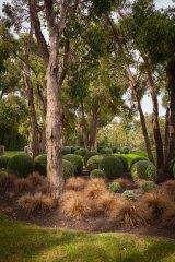 Scott's Flinders project. Photo: Simon Griffiths.