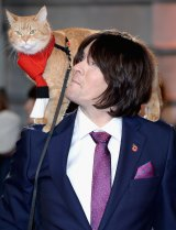 James Bowen's life transformation since meeting the cat Bob is now being told in a film.