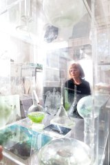 """I'm creating a kind of resuscitation space for the Barrier Reef"": Janet Laurence in her studio in Chippendale."