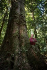 Vica Bayley from  the Wilderness Society, in the Styx Valley in southern Tasmania.