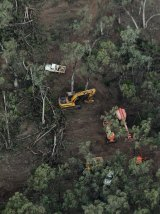 Clear-felling of the Leard Forest for the Maules Creek open-cut coal mine.