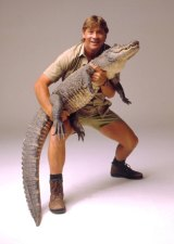 Steve Irwin was killed in 2006 after being struck by a stingray barb in the heart while snorkelling at Batt Reef in Queensland.
