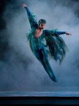 """""""Part of keeping boys in ballet is educating the dads about ballet"""" says dancer Matthew Lawrence, pictured in performance as Oberon."""