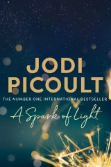 A Spark of Light by Jodi Picoult.
