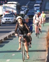 The College Street cycleway.
