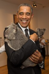 On his second visit to Australia, President Barack Obama cuddles Jimbelung the koala before the start of the G20 meeting in Brisbane on November 15, 2014.