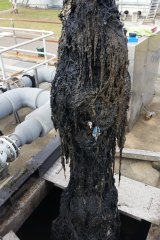 A blockage of wet wipes also known as a fatberg.