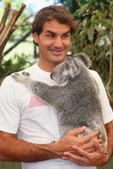Tennis great Roger Federer holds at koala at Lone Pine in 2014.