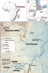 The fossil was uncovered in the Ledi-Geraru area of Ethiopia's Afar region.