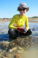 Verena Schoepf with Kimberley corals exposed at low tide.