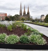 New planting at the Parliament House garden.