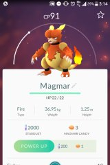 An incense lured this Magmar, which isn't often seen in the area.