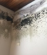Mould can cause health problems, even if it's not visible.