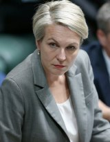 Labor education spokeswoman Tanya Plibersek advocated for the shared equity model in 2007.