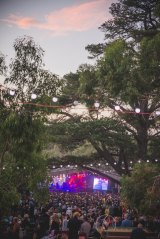 Punters were grateful for the shade of the big trees at the amphitheatre.