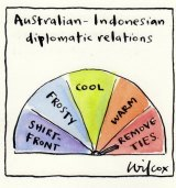 Shirt fronters never last, but the co-operators do. Illustration: Cathy Wilcox