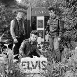 Three young men with floral tribute on the 14th anniversary of Elvis's death. Elvis Memorial Melbourne 1991, from the series Elvis Immortal.