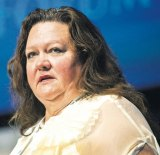 """If Australia does not supply iron ore then other countries will,"" Gina Rinehart told a dinner in Hong Kong."