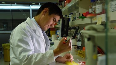Lindsay Wu at work in the lab at UNSW, Sydney.