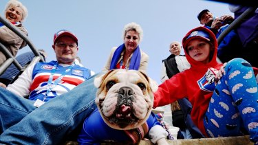 Raising the woof: Bulldog Candy, with owners Shane, Lilly and Lorraine Blythe, at Whitten Oval.