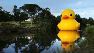 Florentijn Hofman's five-storey-high inflatable rubber duck added a touch of humour to the 2014 Sydney Festival.
