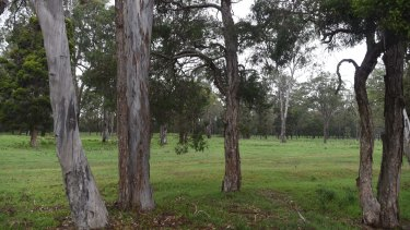 """A """"mini suburb"""" is planned for the Riverlands site in Sydney's south-west."""