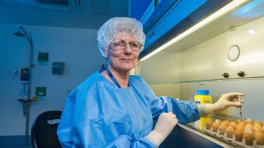 A CSL scientist with eggs used in flu vaccine development and production in Melbourne.