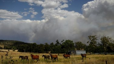 Smoke from the Sir Ivan fire east of Dunedoo, NSW, on Sunday, 12 February 2017.