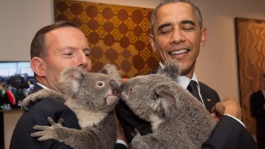 Then-prime minister Tony Abbott and US President Barack Obama cuddled koalas at the G20 in Brisbane.