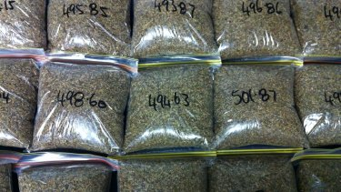 Synthetic cannabis that was seized in another series of raids earlier this year.