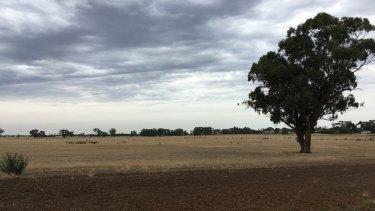 The landscape near Goroke, home of Gerald Murnane.